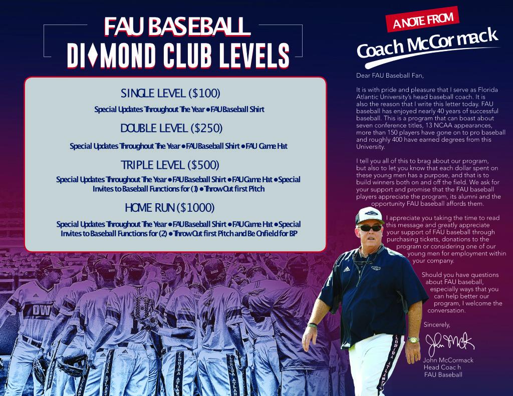 Baseball Club Flyer