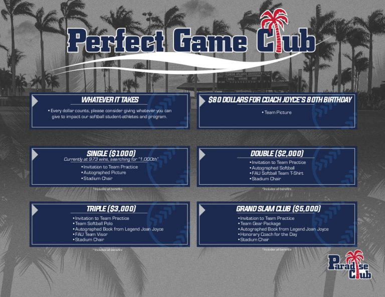 Illustration of FAU Women's Softball Giving Levels on Giving Form