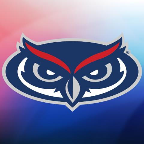 FAU Owl Head Multi-Color